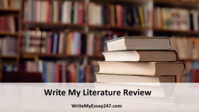 Write My Literature Review For Me